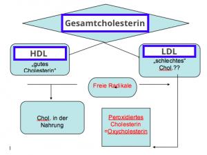 Oxidiertes Cholesterin ©Dr.V.Königswieser
